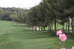 Valencia Golf Courses