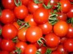 Tomatina Buñol